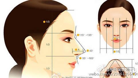 美鼻潜规则――鼻尖整形